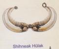 Shihneak hu 001